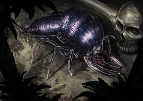 insect by Akiman