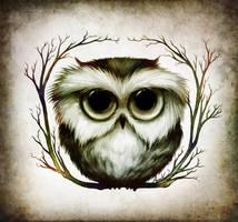 OWL 2 by Anuk