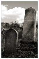 Old cemetery 2 by jerrywhite