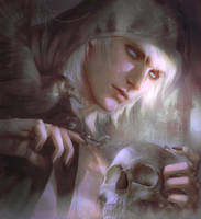 The Black Raven by Zeilyan