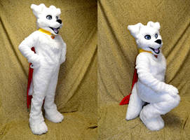 Krypto the Superdog by temperance