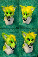 Cyan coyote Head by temperance