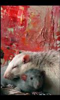 Rat love I by SecretNocturne