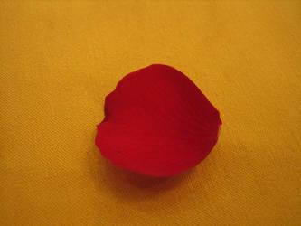 Rose Petal by rurue