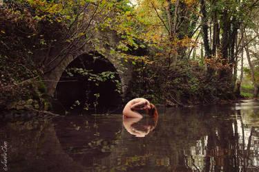 The Bridge - Miss Pudding by AurelieChen