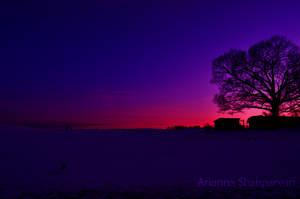 Dark Pink Sunset on Farm by ticklemeimsexy