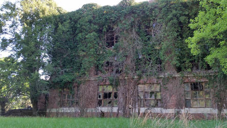 Ivy Covered Glenn Dale Hospital Side View by ticklemeimsexy