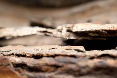 Rust by Tregor