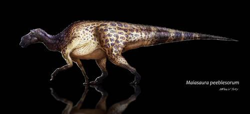 Maiasaura peeblesorum by AntoninJury