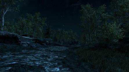 Skyrim's Starry Night by MysticalBats