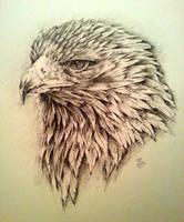 Golden Eyed Eagle by hitogata
