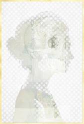 White on white by hogret