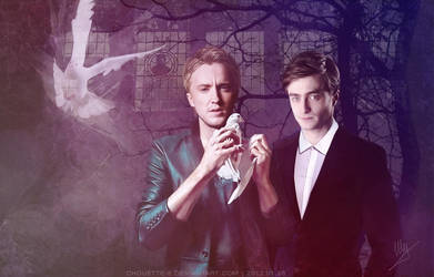 Draco and the pigeon by chouette-e