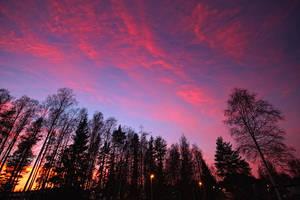 From my backyard by RobinHedberg