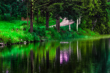 Green shades by RobinHedberg