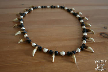 Coyote tooth necklace by Yshara