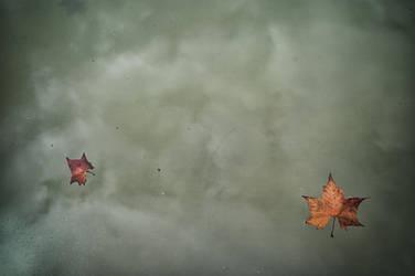 Floating by deinhard