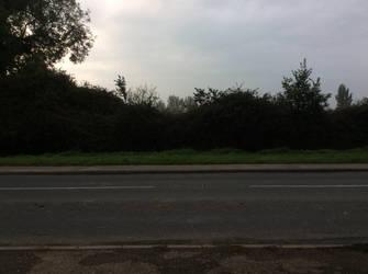 Landscape by EMS-ran-away