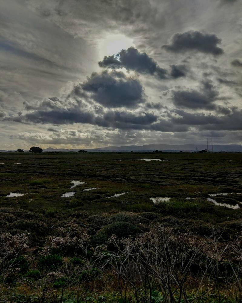 North Bull Isand by Margotka