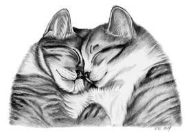 Feline love by Mimose91