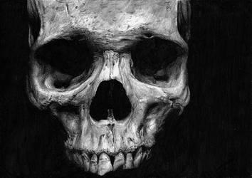 Skull by Skippy-s