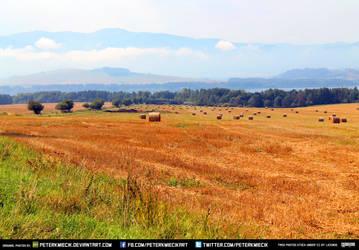 Free Stock Wheat Field Grain Plains Mountains Sky6 by PeterKmiecik