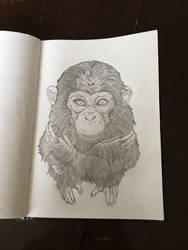 Monkey by yocoro