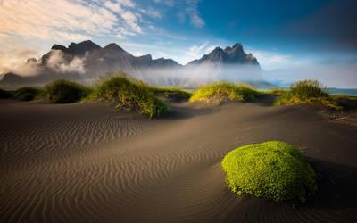 Beach Nature 3 by bouzid27