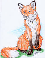 .::Fox::. by WhiteSpiritWolf