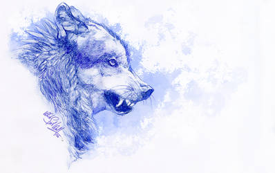 .:Blue Wolf:. by WhiteSpiritWolf