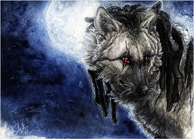 .:In The Night:. by WhiteSpiritWolf