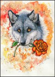.: Do u want a rose ? :. by WhiteSpiritWolf