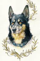.: Brave Dog :. by WhiteSpiritWolf