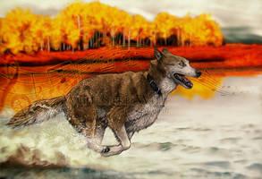 YCH - .:Autumn Run:. by WhiteSpiritWolf