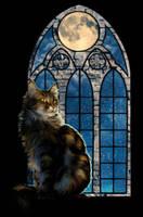 .: Moonlight Kitty :. by WhiteSpiritWolf
