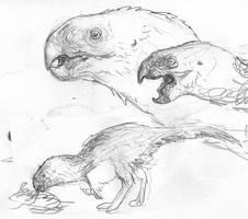 Oviraptor Hyena-Analogue by povorot