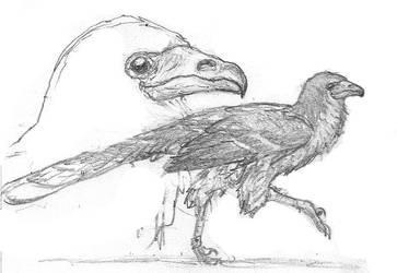 Ground-hawk by povorot