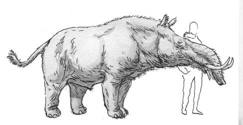 The Almost-tapir by povorot
