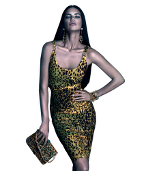 Adriana Lima Versace PNG by dealwyouth