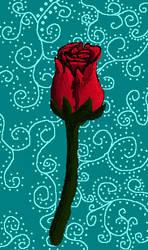 A rose by 13dawn13