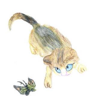 japanese cat by Tigra-kitty