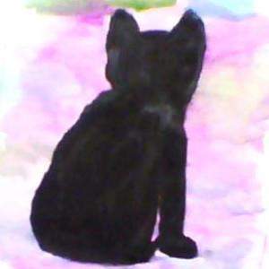 totoro7-11's Profile Picture