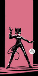 Catwoman 9-26-11 by mikemaihack