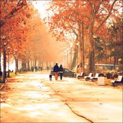 the December morning by VesnaSvesna