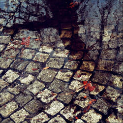 lonely path by VesnaSvesna