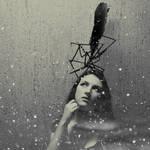 Rare bird by VesnaSvesna