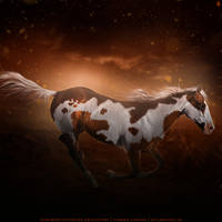 HEE Horse Avatar | DP Persephone by iAlissa
