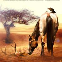 HEE Horse Avatar   Galashiels by iAlissa