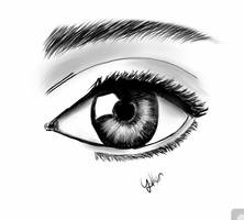 Iris by yetkin