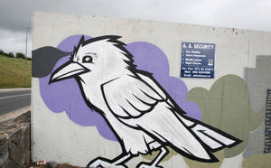 Raven by Frizelle